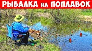 Рыбалка в днепропетровской области на поплавок