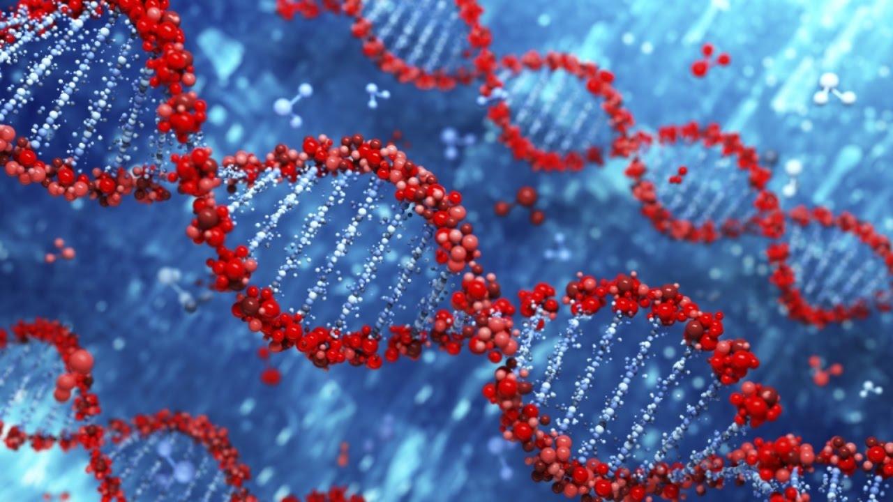 Genetics of a Tumor
