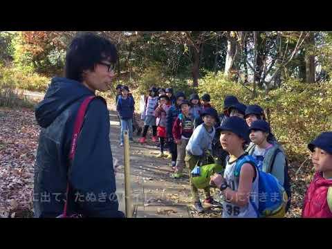 和光鶴川小学校 3年1組総合「たぬき」