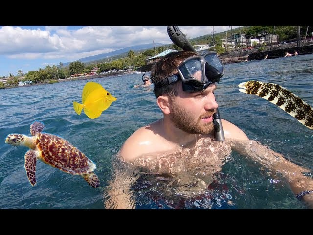 First Time On Tropical Island Swimming in Ocean! Amazing Fish & Sea Turtles   Family Vacation Vlog