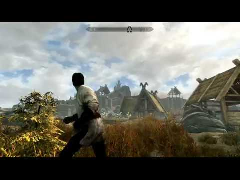 Weird Black Flickering on Distant Objects :: The Elder Scrolls V