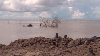 Triều cường gây sạt lở nghiêm trọng tuyến ven biển đông Cà Mau