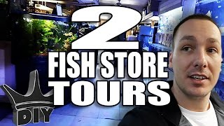 2 Fish store tours and Discus Aquarium Set Up