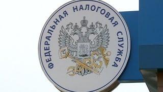 В Управлении налоговой службы огласили итоги декларационной компании