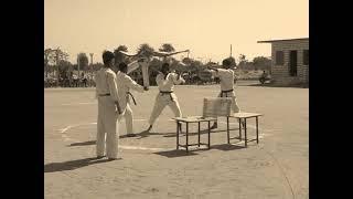 HAMZA SPORTS Galaxy school karate demo auwa pali