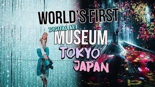 WORLD'S FIRST DIGITAL ART MUSEUM: teamLAB Borderless TOKYO JAPAN