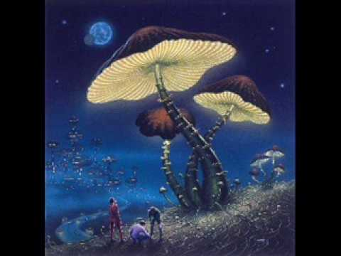 Joe Tex, These Taming Blues - Phosphorescent
