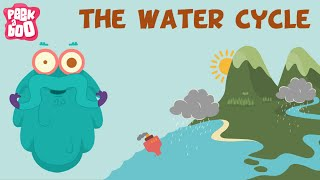 The Water Cycle | The Dr. Binocs Show | Learn Videos For Kids