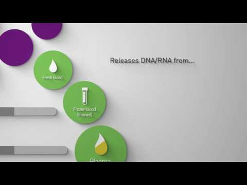Arcis DNA Sample Prep Kit
