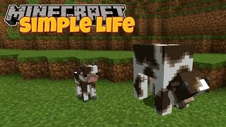 Minecraft | Simple Life | #10 GROWING THE FARM