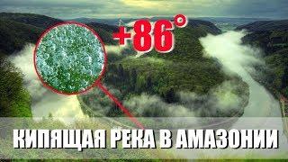 Кипящая река в Амазонии. Аномальная погода. Климатические изменения. Выпуск 82