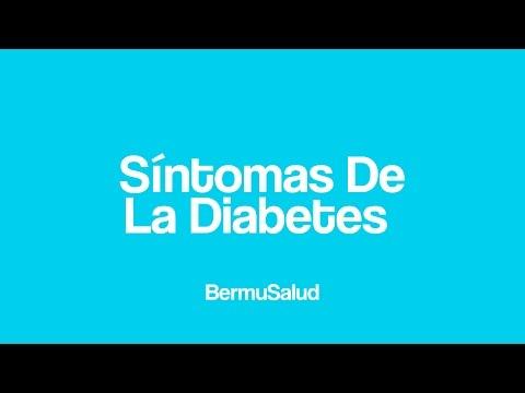 Diabetes immun, was es ist