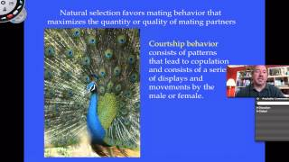Social Behavior Part 1