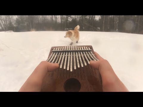 The most relaxing video ever - Serenading a dog with a kalimba.