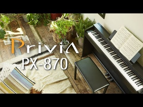 Casio цифровое пианино PX-870BN