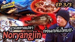 เที่ยวตลาดปลา แล่สด โครตอร่อย [หัวครัวทัวร์เกาหลี] Ep.22 (Part 3/3)