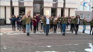 Бойцы новгородских студенческих отрядов провели флешмоб в преддверии Дня РСО