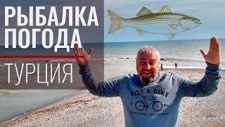 Рыбалка с берега в анталии