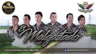 """""""El malgastado"""" (Audio) S5 Sistema Cinco Rancho Records Mx 2017"""