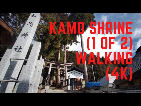 Kamo Shrine (1 of 2) Walking (4K) [10:53]