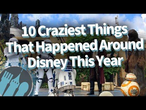 10 Craziest Things that Happened Around Disney This Year!