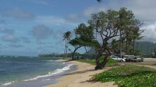 preview picture of video 'AGNES AT THE HAUULA BEACH OAHU HAWAII, 8-23-2008'
