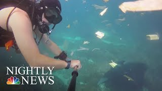 Stunning New Video Shows Massive Plastic Debris In Ocean | NBC Nightly News