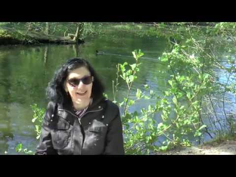 Impuls von Gemeindereferentin Eva Jessen zur 2. Woche der Osterzeit