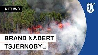 Ramp dreigt bij Tsjernobyl door bosbranden