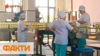 Лидеры в мире: Украина экспортирует 60% подсолнечного масла планеты