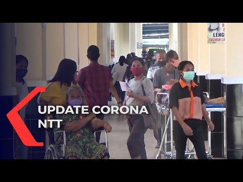 update corona ntt kamis corona di ntt tembus kasus