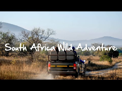 South Africa Wild Adventure Video