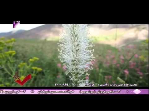 Khoy Mount Avrin (Avrin Dağı) Song- By: