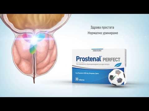 Простатата какво е SA