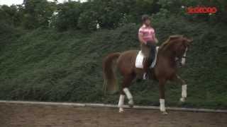 video of Bella Rose 2