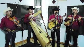 Conjunto De Arpa Grande (Sabiendo Quien Era Llo) Jilgueros Michoacános 2013