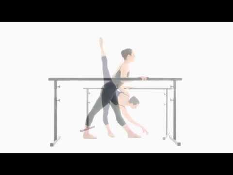 Holistic Ballet DVD Introduction