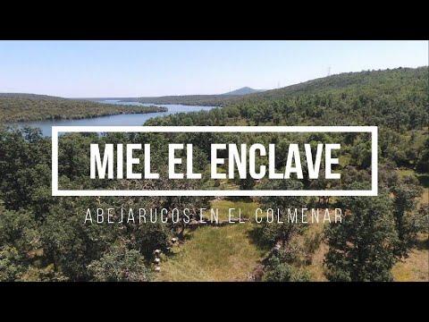, title : 'Abejarucos en el colmenar - Miel El Enclave
