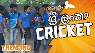 Sri Lanka Cricket (ශ්රී ලංකා ක්රිකට්)