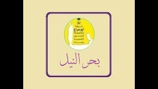 بحر النيل _ فرقة ابو سراج والمجموعة #فنون_شعبية