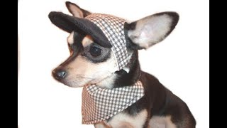 Comfy Dog visor hat DIY
