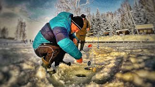 В первый раз на зимнюю рыбалку