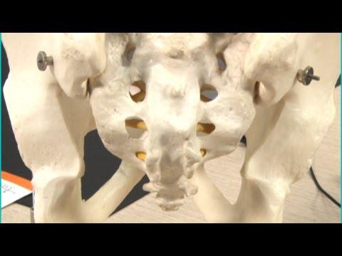 Esercizi con cifosi della colonna vertebrale toracica per i bambini di video