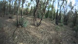 preview picture of video 'Castlemaine Walmer Forest (Wattle Flat) Trail Network'