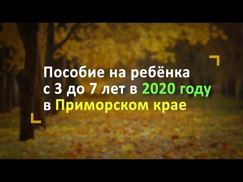 Пособие на ребёнка с 3 до 7 лет в Приморском крае в 2020 году