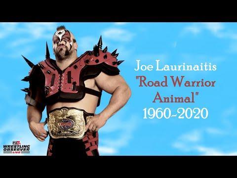 "Remembering ""Road Warrior Animal"" Joe Laurinaitis: Wrestling Observer Live"