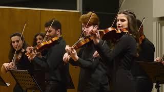 W.A. Mozart Serenata Notturna in D major, K.239 - Fle[x] String Ensemble