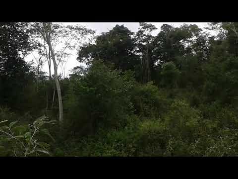 Terras do Rio Gongogi-Barra do Rocha