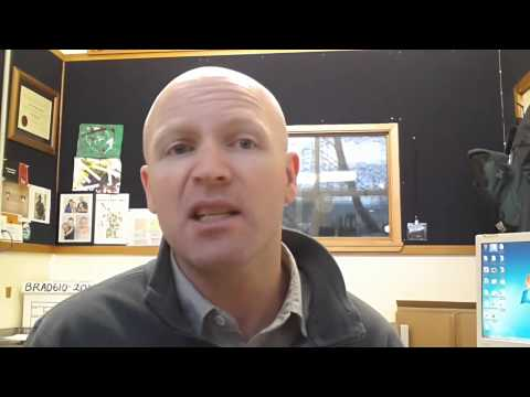 International News Video 4