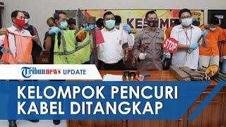 Menyamar Jadi Petugas Telkom, 13 Orang Kawanan Pencuri Kabel Lintas Provinsi Diringkus Polisi